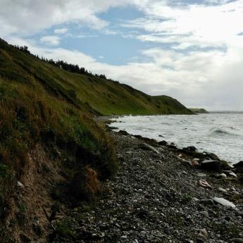 The coastline of Nekselø is beautiful!
